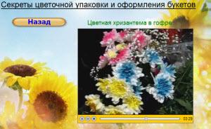 цветочная хризантема с цветочной краской
