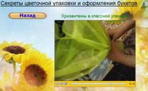 хризантема в фетре видео