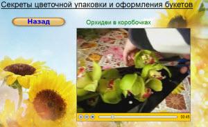 орхидея в коробочке видео