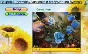 синие розы уроки